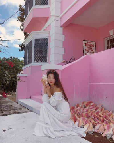 Da Pink And White Palace